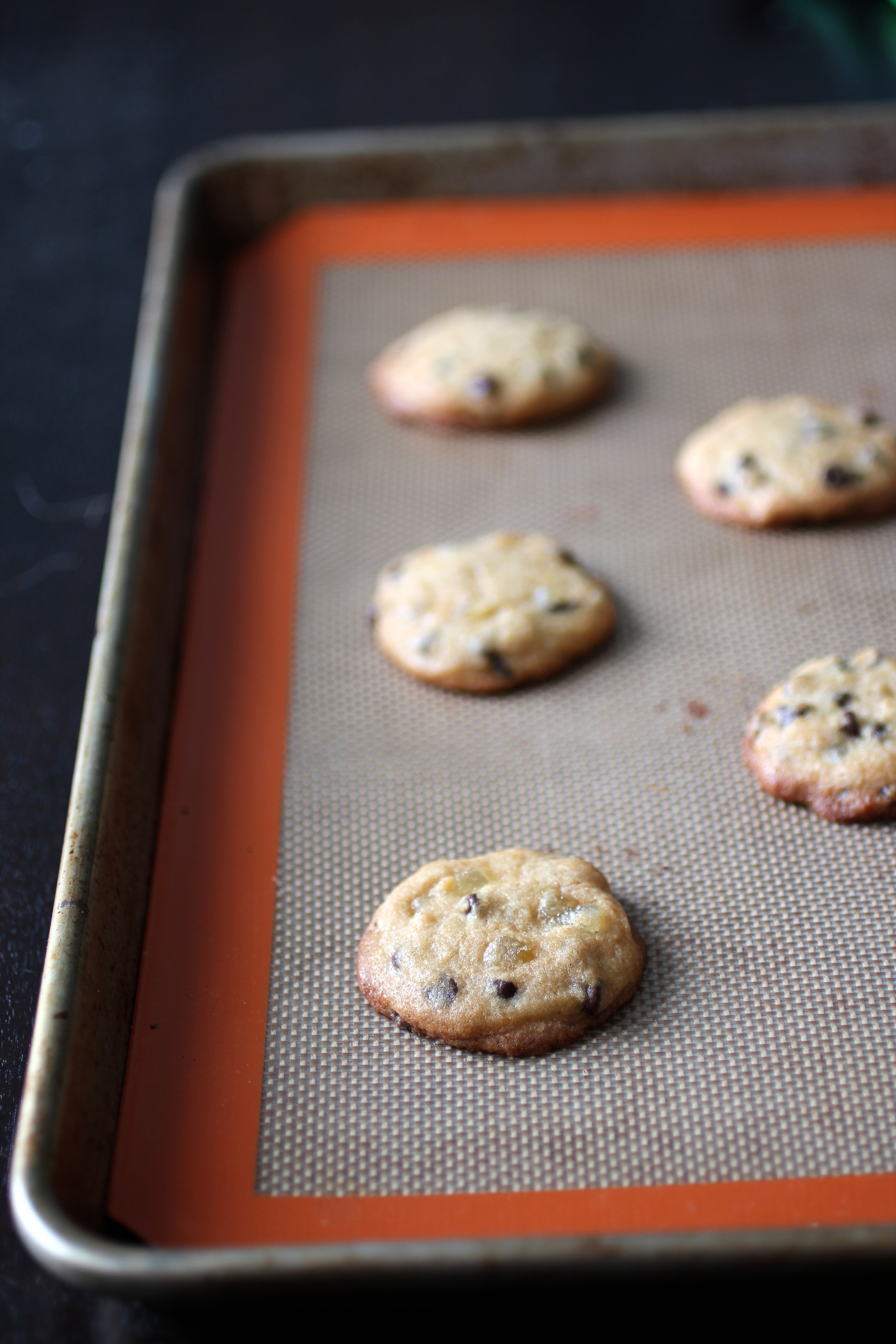 ... the soy milk lees and studded with candied ginger and chocolate chips