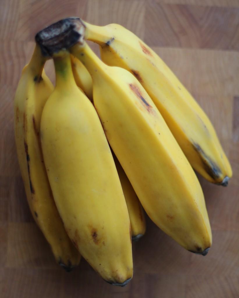 saba banana musa balbisiana peels as The saba banana is a triploid hybrid of the seeded banana musa balbisiana and musa acuminata [6] its official designation is musa acuminata × balbisiana (abb group) 'saba.