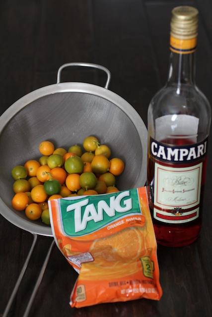 burnt-lumpia-filipino-food-blog-campari-calamansi-tang-3