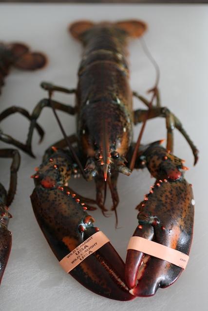 burnt-lumpia-filipino-food-blog-lobsters-rubberbands
